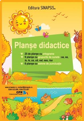 Planșe didactice - Ortograme, grupuri de litere, semne de punctuație